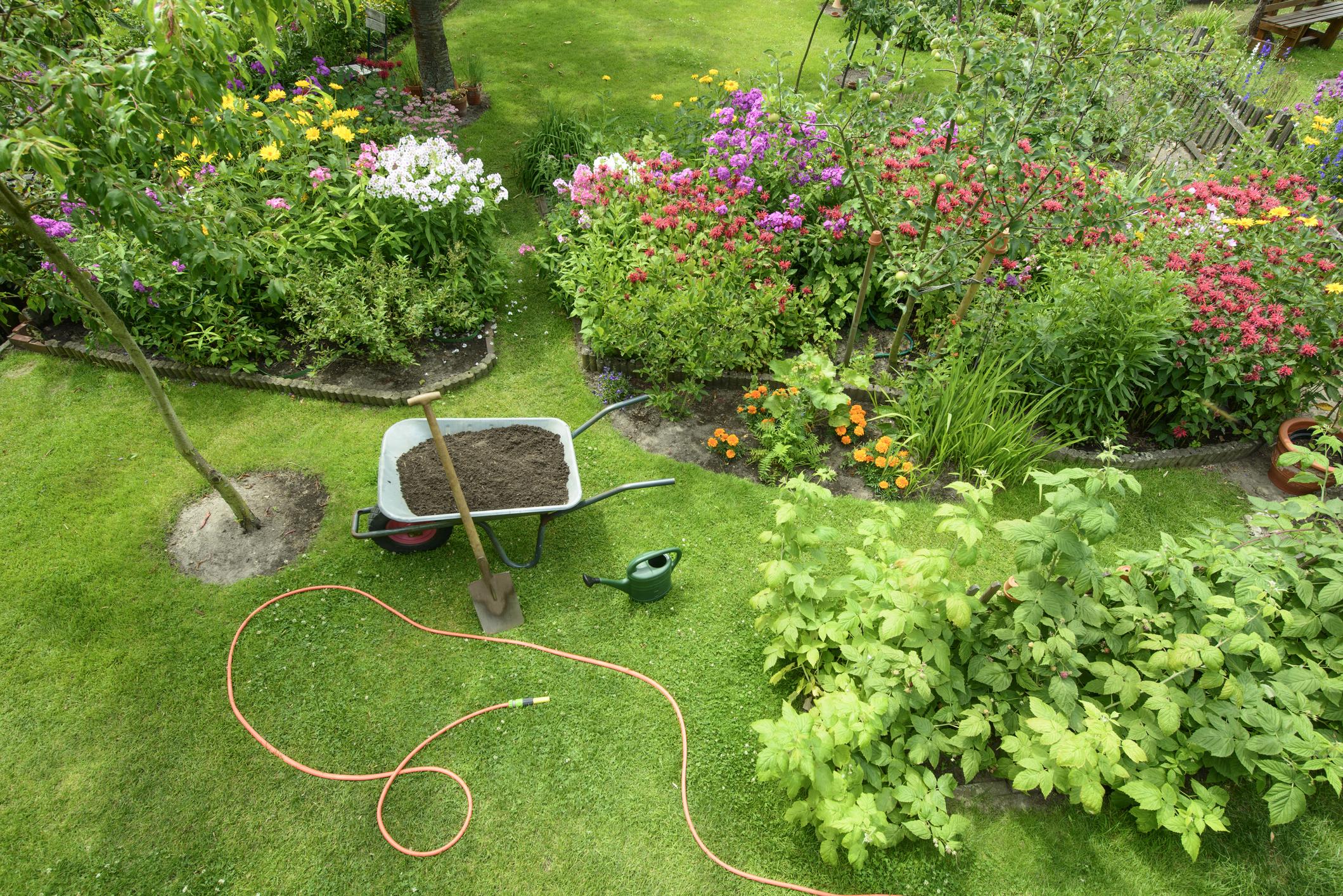 tuin ontwerpen hovenier tuinman gezocht